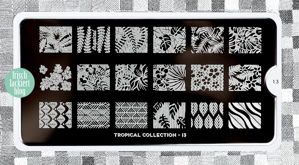 MoYou Stamping Plate Tropical 13