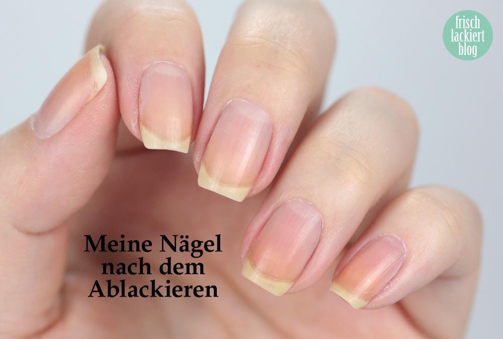 La Balmba Rosa – Healing Rose Balm – Test und Review – by frischlackiert