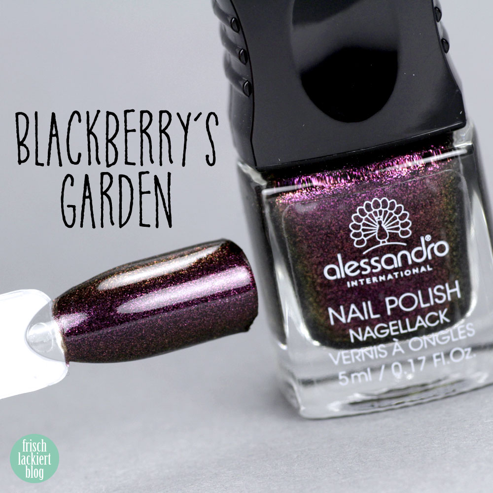 Alessandro Nagellack – Herbst Kollektion 2018 – Summer Berries – Blackberry´s Garden – Violetter Flakie Glitzer – swatch by frischlackiert