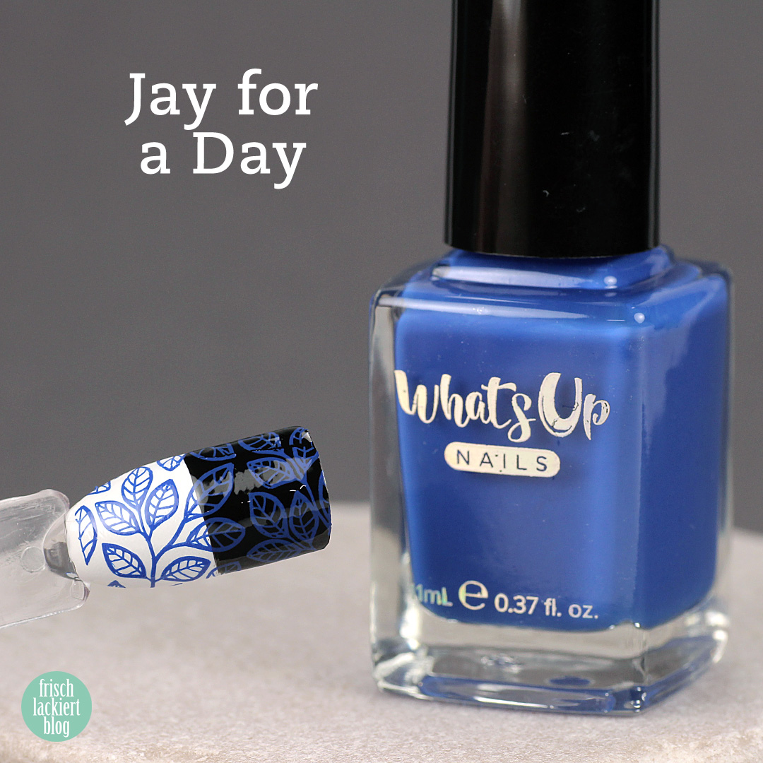 Whatsup Nails Stamping Polish - Jay for the Day - Review - by frischlackiert